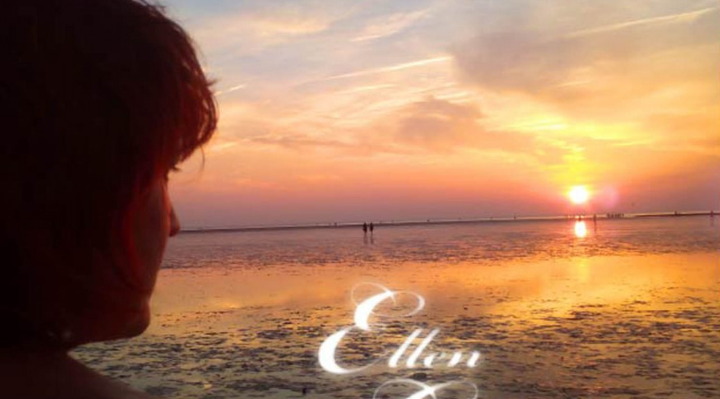 Cover-Che Sara